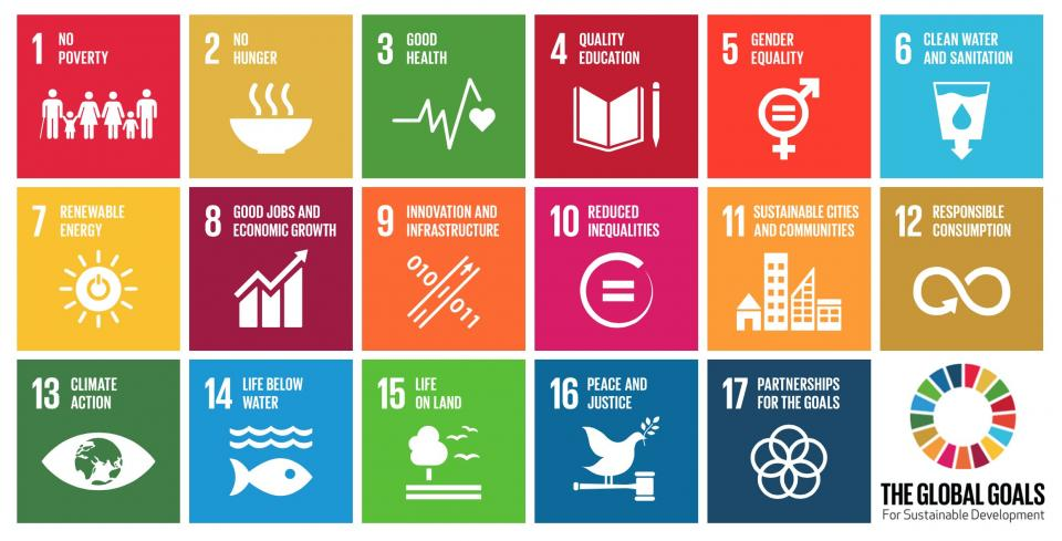 global-goals-full-icons.png_2318x1180_q85_crop_subsampling-2_upscale