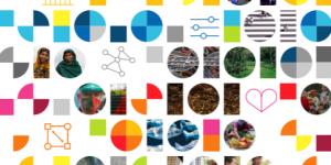 2021-06-03 12_14_40-UNDP_CI_Report_1_052021.pdf